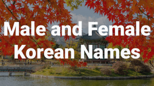 Male and Female Korean names